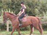 Oui je suis sur mon cheval !