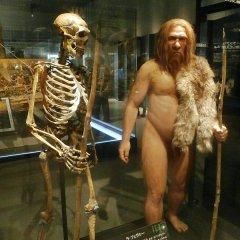 Les humains et Néandertal ont vécu ensemble en Israël il y a 55 000 ans