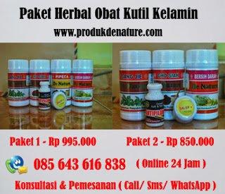 Produk Herbal Obat Kutil Kelamin