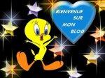 bienvenu sur mon 2eme blog