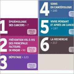Les cancers en France: état de la situation (rapport annuel interactif de l'INCa)