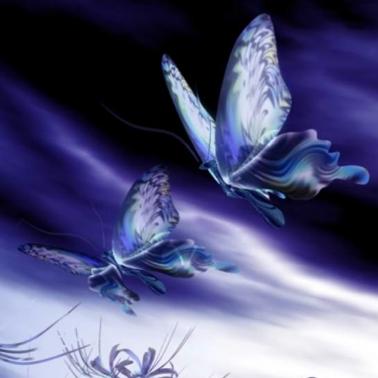 ◊ Des Papillons dans l'Estomac ◊