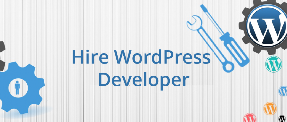 Hire Dedicated WordPress Developer