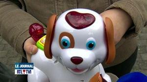 Un chien en plastique qui chante avec un vocabulaire osé - Vidéo - RTL Vidéos