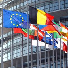 Définition européenne des perturbateurs endocriniens: la France cède à l'Allemagne