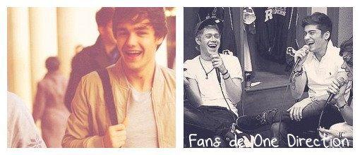 Ma page sur les One Direction ♥