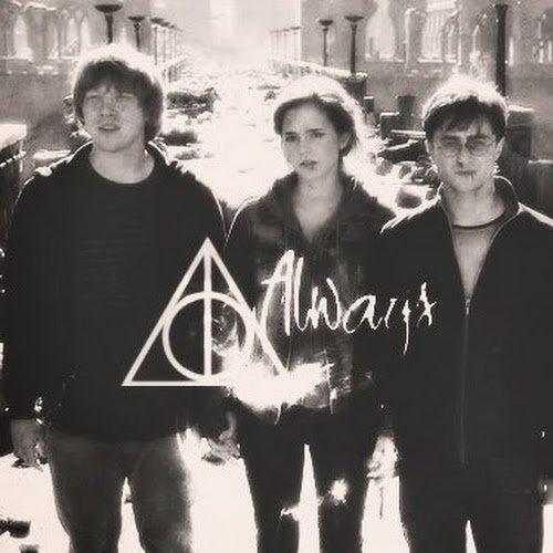 Potter Maraudeurs