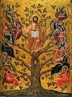 Message de Jésus du Journal de Pelianito…du 15 Avril 2017 * Vos prières peuvent être tout ce qui manque à un pauvre prêtre et cela sera compté contre vous au jugement*