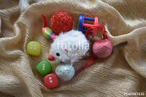 """""""Jouets pour chat domestique"""" photo libre de droits sur la banque d'images Fotolia.com - Image 146047430"""