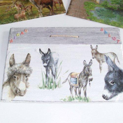 Ardoise ânes