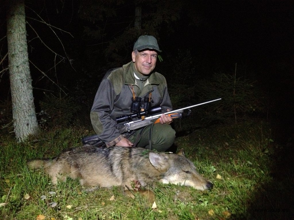 la chasse et ses conséquences