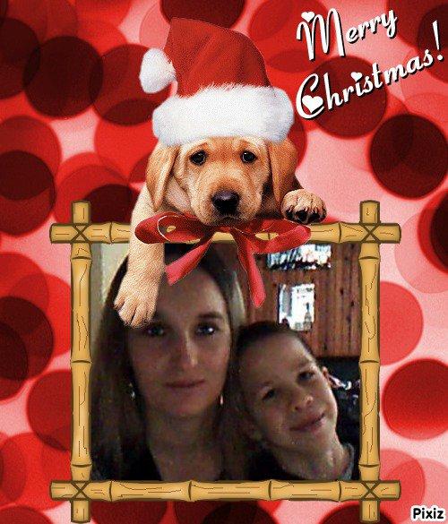Résultat du montage photo : Chiot Merry Christmas Joyeux Noël - Pixiz