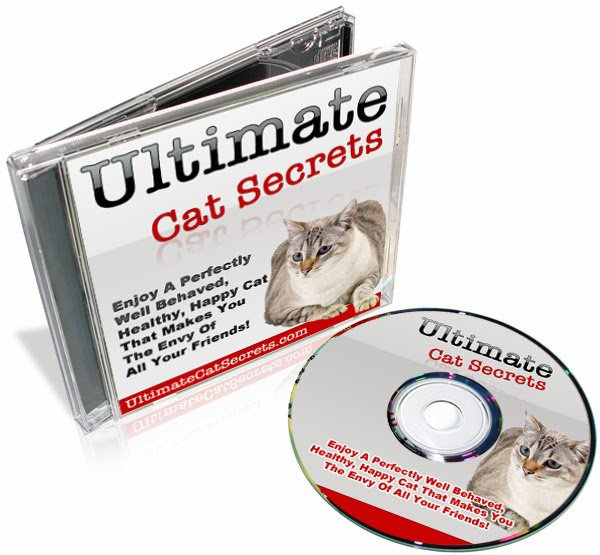 Ultimate Cat Secrets By Mary Mathews Review - Is It Any Good? | The Best Items