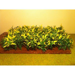 Sachet de 110 pieds de maïs - Baa32 - Accessoires pour miniatures agricoles aux 1/32