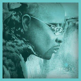 All Hip Hop Archive: Sadat X - Agua