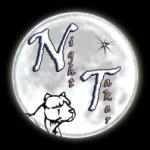 Night Taker - Elevage Amstaff, Staff, American Staffordshire Terrier - Accueil - Elevage Amstaff, Staff, American Staffordshire Terrier