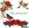 bon dimanche à tous - Blog de kinder6262 - BISOUS A TOUS