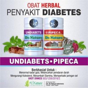 Obat Diabetes Herbal Tanpa Efek Samping | Plastic566.info