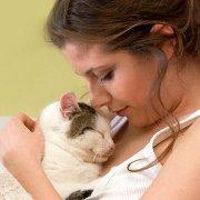 Les bénéfices psychologiques d'un animal de compagnie | PsychoMédia