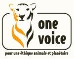 One Voice | Pour une éthique animale et planétaire