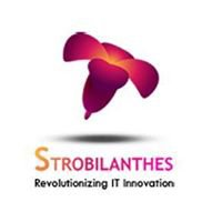 Strobilanthes Technology Solutions India Pvt Ltd