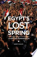 Egypt's Lost Spring: Causes and Consequences: Causes and Consequences - Sherif Khalifa - كتب Google
