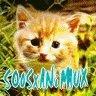 le blog de SO0SxANiMAUX