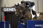 Hickstead, un des meilleurs chevaux au monde, meurt devant les caméras