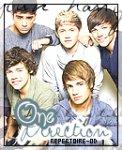Répertoire sur les fictions des One Direction .