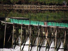 Mes parcours des voies d'eau par Pierre Lemoine: Barrages à aiguilles sur la Meuse .