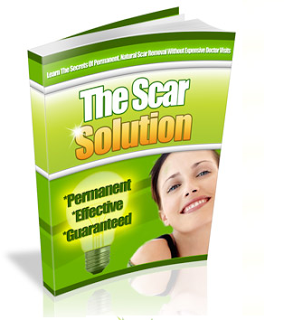 The Scar Solution Developed By Sean Lowry Review