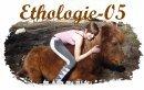 Blog de Ethologie-05