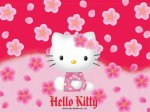 I   like   Hello  Kitty   so  cute