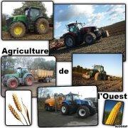 Agriculture de l'Ouest