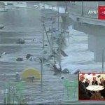 Japon : Des chercheurs prévoient un séisme majeur avant 2016