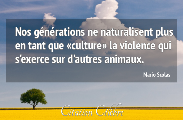 Nos générations ne naturalisent plus en tant que «culture» la violence qui s'exerce sur d'autres animaux.