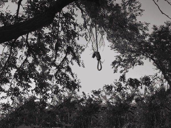 L'arbre à potence