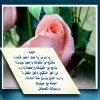 Posté le mardi 28 septembre 2010 16:17 - Blog de soumiafg