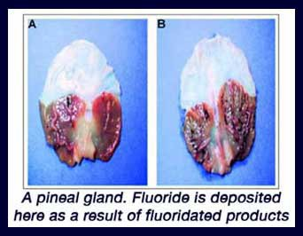 Le Fluor...ajouté à l'eau, pour controler les cerveaux