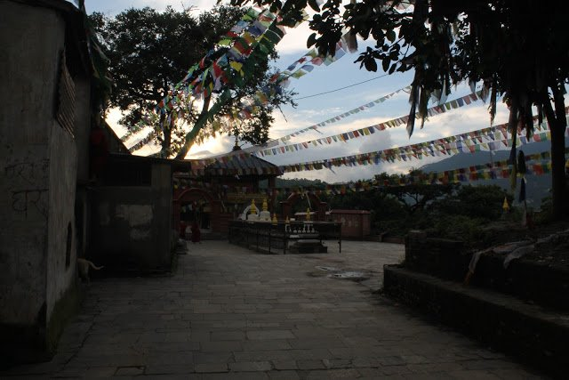 Exploring the Evening in Monkey Temple