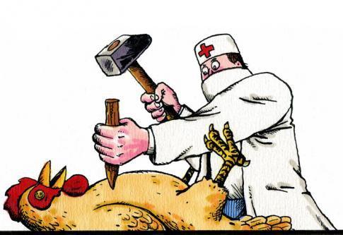 CHINE • Sept personnes atteintes de la grippe aviaire