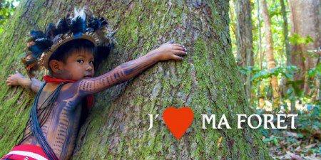 Aquaverde : soutenons les gardiens de la forêt amazonienne - Module mère comment va la Belle Bleue ?