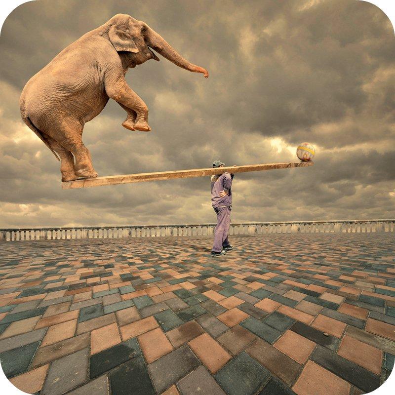 Balance is the Key in Life. - Jan Jansen