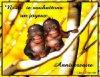 a partir du 1 avril création de mon nouvau log pour souhaiter des anivaissaire - Blog de hommage1 - hommage