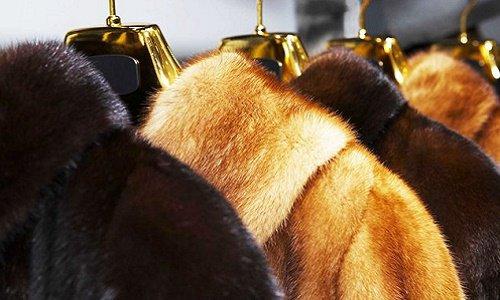 Pétition : Interdire la fourrure
