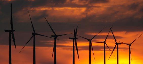Le scandale de l'électricité verte : 134 milliards extorqués aux Français