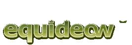 Se connecter sur Equideow