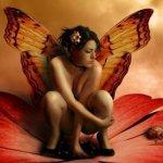 Posté le jeudi 12 janvier 2012 04:03 - Blog de adam-et-eve