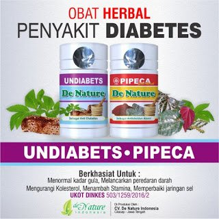Undiabets Dan Pipeca Paket Ampuh Obat Diabetes - produkdenature