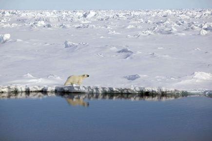 Dérèglement du climat: des signes toujours plus alarmants | Catherine HOURS | Changements climatiques